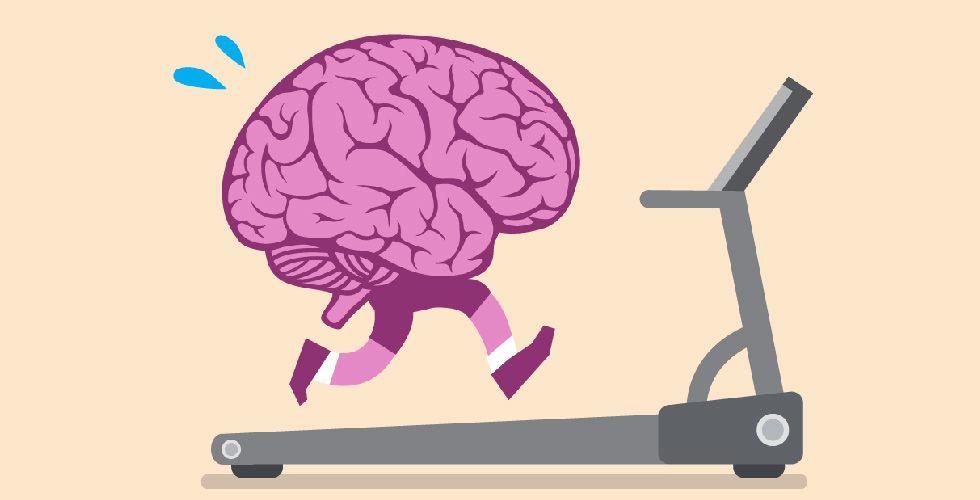 ¿Se pueden regenerar las neuronas? - 5